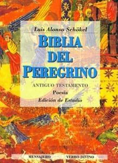 Foto de BIBLIA DEL PEREGRINO TOMO I (A.T.)