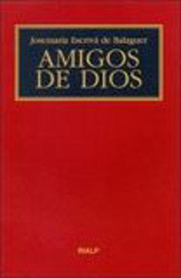 Foto de AMIGOS DE DIOS (BOLSILLO/RUSTICO)
