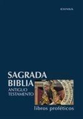 Foto de SAGRADA BIBLIA LIBROS PROFETICOS      #4