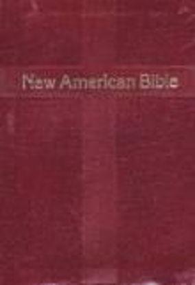 Foto de NEW AMERICAN BIBLE (PERSONAL SIZE) BORDES DORADOS