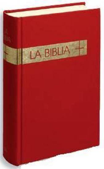 BIBLIA (VERBO DIVINO/TRADUCCION INTERCONFESIONAL)