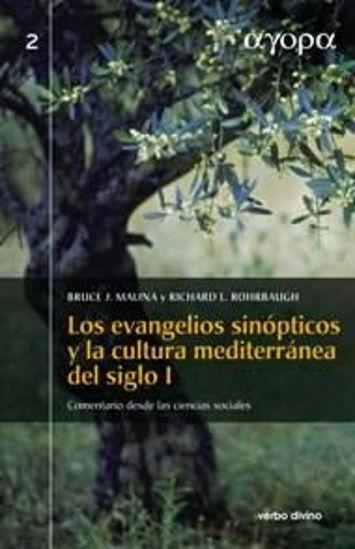 Foto de EVANGELIOS SINOPTICOS Y LA CULTURA MEDITERRANEA DEL SIGLO I (TAPA DURA) #2