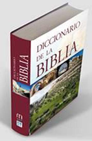 Foto de DICCIONARIO DE LA BIBLIA (SAL TERRAE)