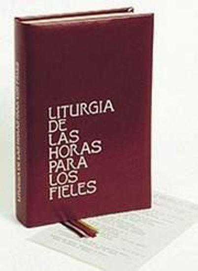 Foto de LITURGIA DE LAS HORAS PARA LOS FIELES (DESCLEE)
