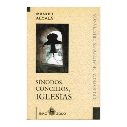 SINODOS CONCILIOS IGLESIAS