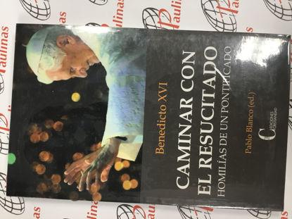 Picture of CAMINAR CON CRISTO Homilias de un Pontificado